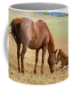 Wild Horse Mother And Foal Coffee Mug