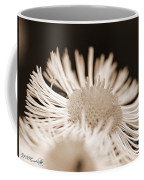 Wildflower Named Robin's Plantain Coffee Mug