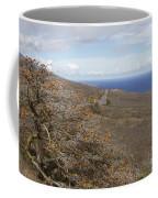 Wiliwili Flowers - Erythrina Sandwicensis - Kahikinui Maui Hawaii Coffee Mug