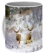 Winter Bucks Coffee Mug