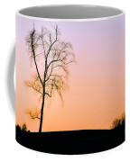 Winter Sunset Tree Coffee Mug