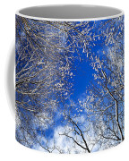 Winter Trees And Blue Sky Coffee Mug