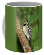 Yellow-bellied Sapsucker Coffee Mug