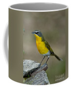 Yellow-breasted Chat Coffee Mug