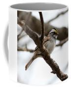 Yellow Crowned Sparrow Coffee Mug