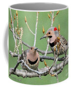 Yellow-shafted Northern Flickers Coffee Mug