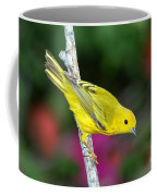 Yellow Warbler Dendroica Petechia Coffee Mug