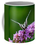 Zebra Swallowtail Butterfly Square Coffee Mug
