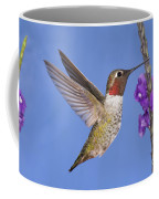 Annas Hummingbird Coffee Mug