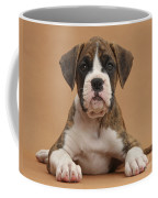 Boxer Puppy Coffee Mug by Mark Taylor