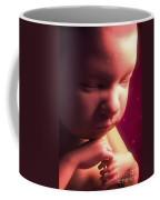 Developing Fetus Coffee Mug