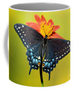 Eastern Black Swallowtail Butterfly Coffee Mug