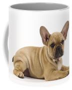French Bulldog Puppy Coffee Mug