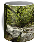 Jungle Stream Coffee Mug