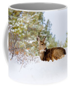 Mule Deer In Snow Coffee Mug