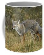 Patagonia Grey Fox Coffee Mug