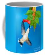 Ruby Throated Hummingbird Female Coffee Mug
