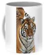 Tigre De Siberie Panthera Tigris Altaica Coffee Mug