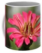 Zinnia From The Whirlygig Mix Coffee Mug