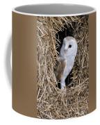 100205p198 Coffee Mug