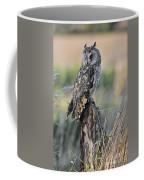 100205p262 Coffee Mug