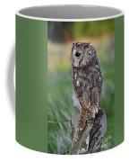 100205p299 Coffee Mug
