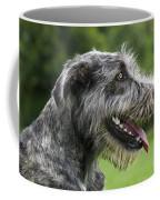 101130p061 Coffee Mug