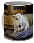 101130p063 Coffee Mug