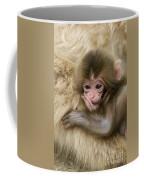 Baby Snow Monkey, Japan Coffee Mug