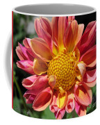 Dahlia From The Showpiece Mix Coffee Mug