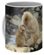 Snow Monkeys Coffee Mug