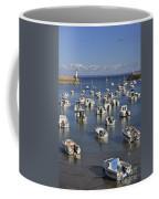 110202p149 Coffee Mug