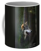 110221p044 Coffee Mug