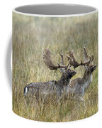 110221p118 Coffee Mug