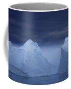 110307p045 Coffee Mug