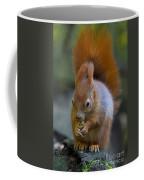 110307p076 Coffee Mug