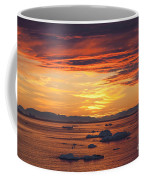 110307p086 Coffee Mug