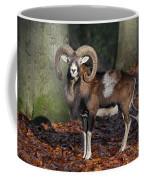 110307p176 Coffee Mug
