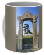 110307p278 Coffee Mug