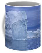 110506p054 Coffee Mug