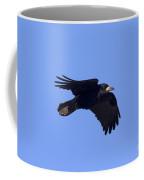 110506p059 Coffee Mug