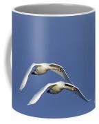 110506p087 Coffee Mug