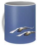 110506p088 Coffee Mug