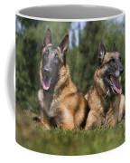 110506p116 Coffee Mug