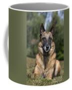 110506p117 Coffee Mug