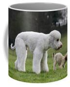 110506p119 Coffee Mug