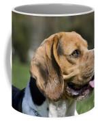 110506p141 Coffee Mug