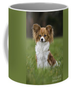 110506p146 Coffee Mug