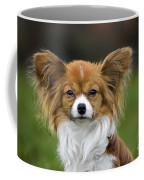 110506p149 Coffee Mug