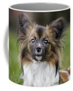 110506p151 Coffee Mug